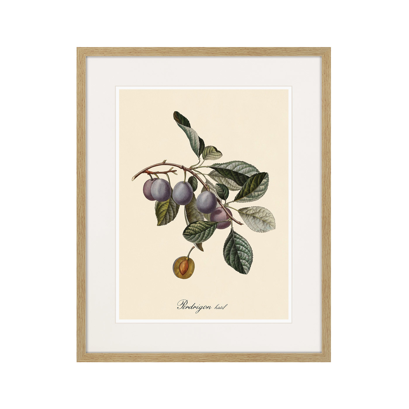 Juicy fruit lithography №5, 1870г.