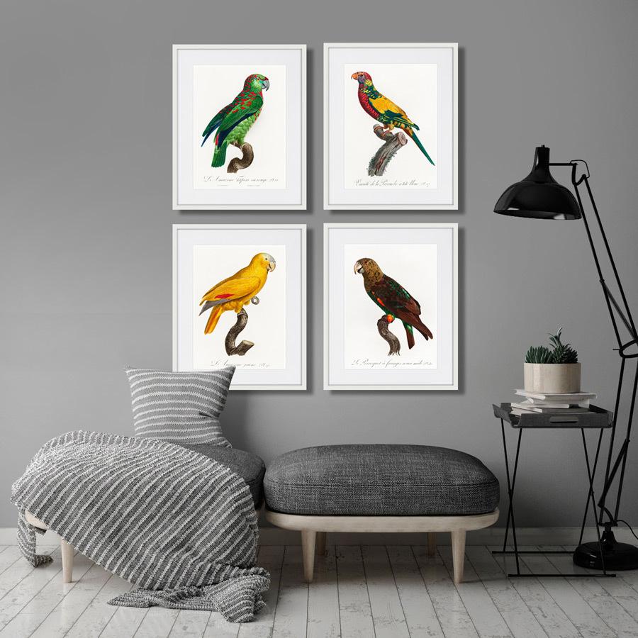 Beautiful parrots №3, 1872г.