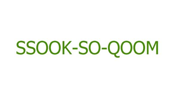 SSOOK_SOO_QOOM.jpg