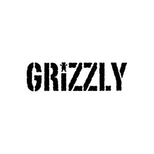 Подшипники для скейта GRIZZLY Golden Bear-Ings ABEC-7