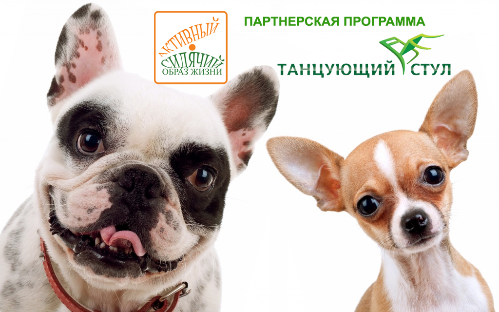 ПАРТНЕРКА ИНТЕРНЕТ МАГАЗИНА ТАНЦУЮЩИЙ СТУЛ