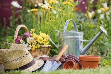 План работ в огороде
