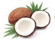 Масло кокоса (Cocos nucifera)