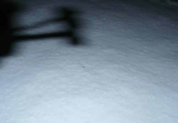 Ночью все тени на снегу страшные