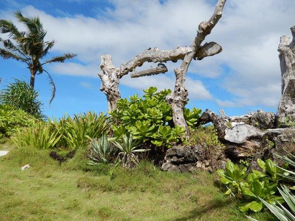 Сказочный остров Борокай