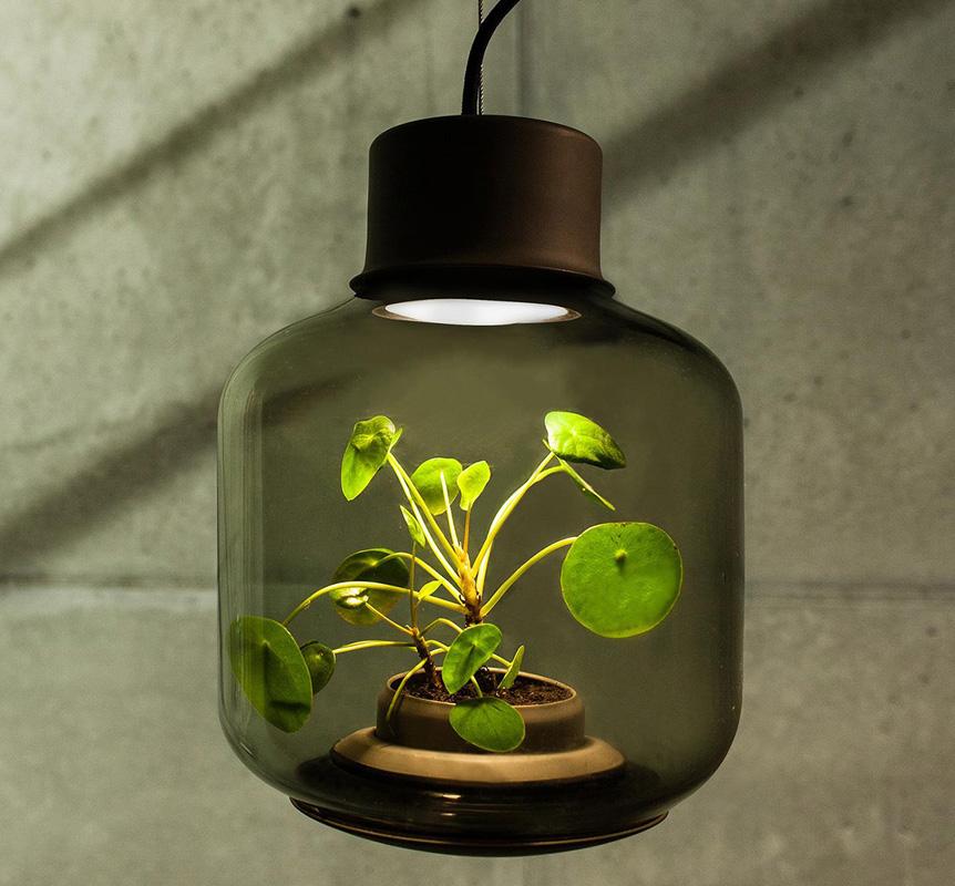 Светильник Mygdal Plantlamp от Nui Studio