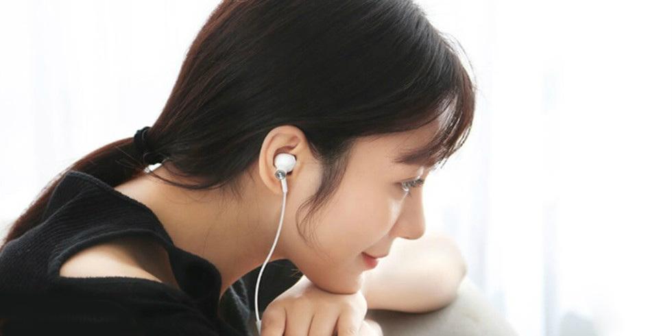 Наушники Xiaomi Dual-Unit Half-Ear Type-C BRE02JY (черный)