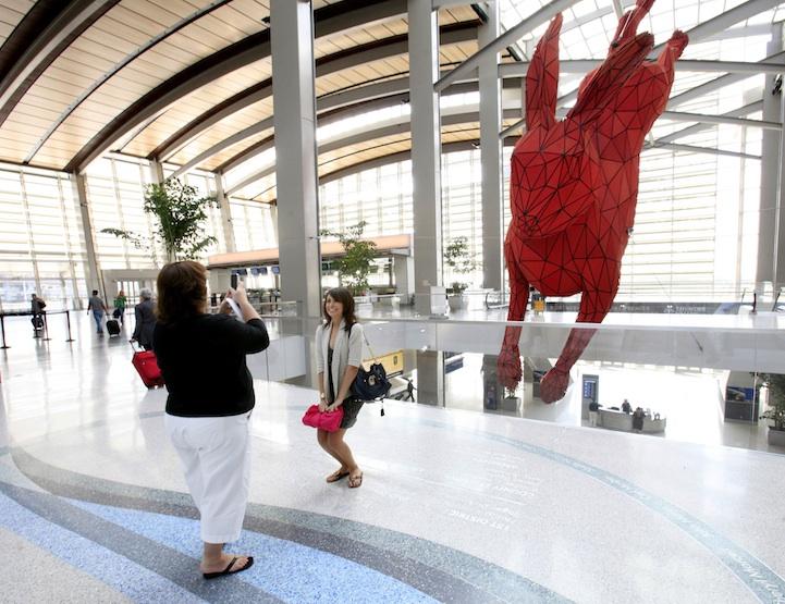 кролик в аэропорту.
