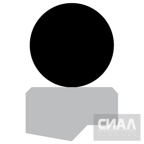 Профиль_уплотнение_штока_RS09B.png