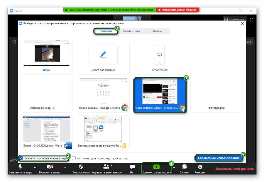 Пример включения демонстрации экрана в Zoom