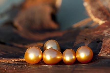 золотой жемчуг Палавана