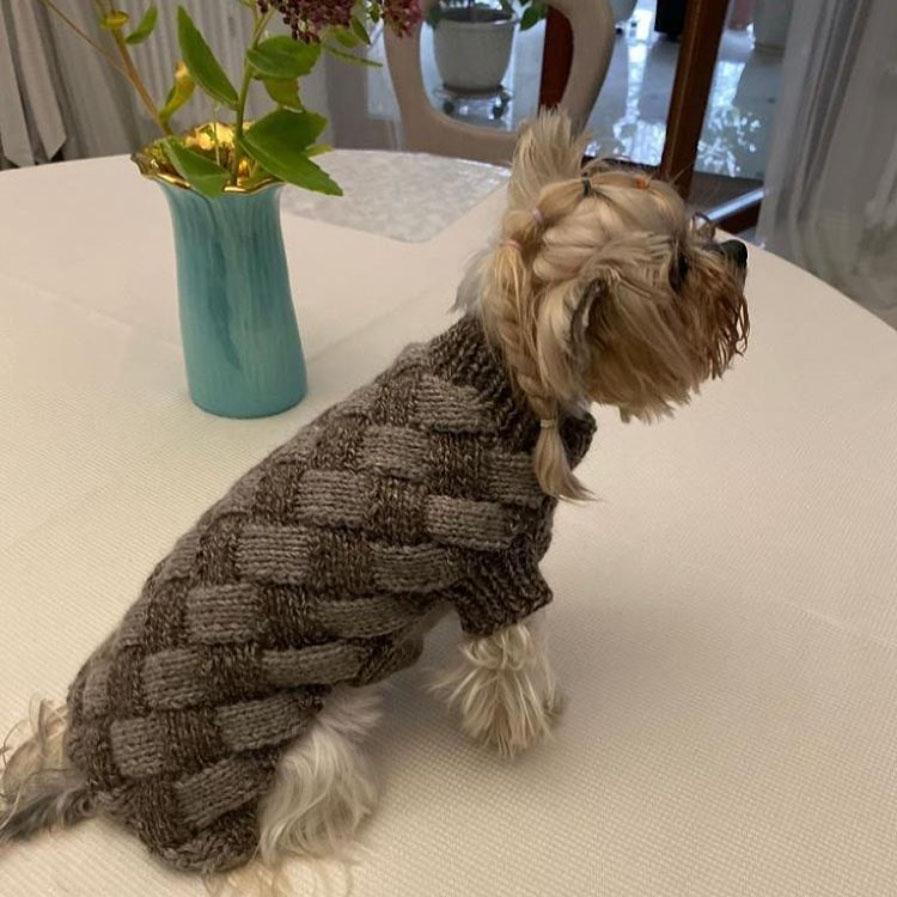 костюм для собачки из пуха яка