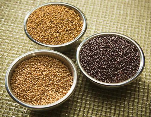 Семена горчицы. Фото с сайта kodelife.ru