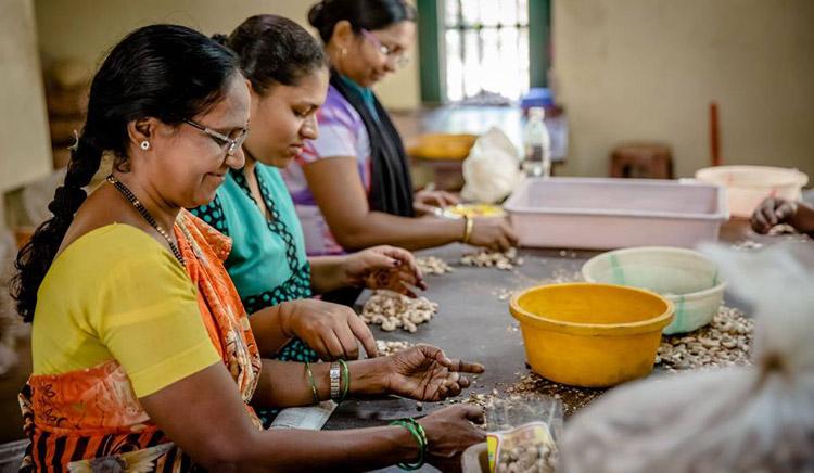 Фабрика по производству орехов в Азии