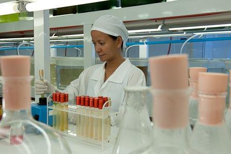Дорис в лаборатории планктона