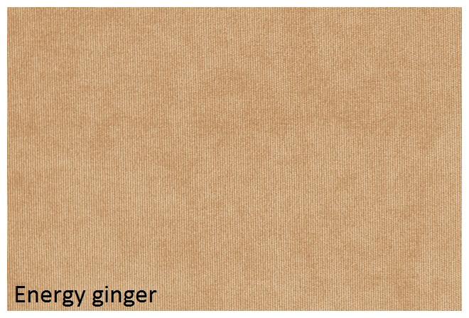 energy_ginger.jpg
