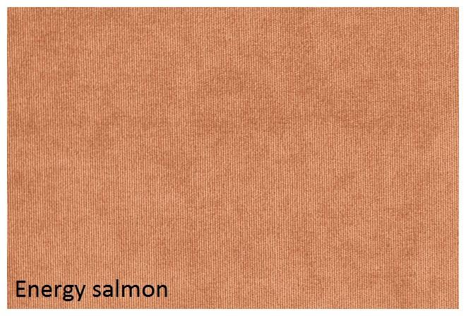 energy_salmon.jpg