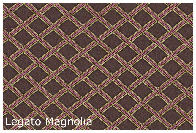 Legato_Magnolia.jpg