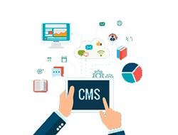 Выбор CMS