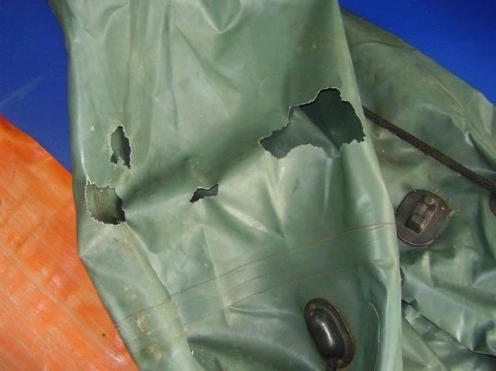 Крысы погрызли лодку из ПВХ
