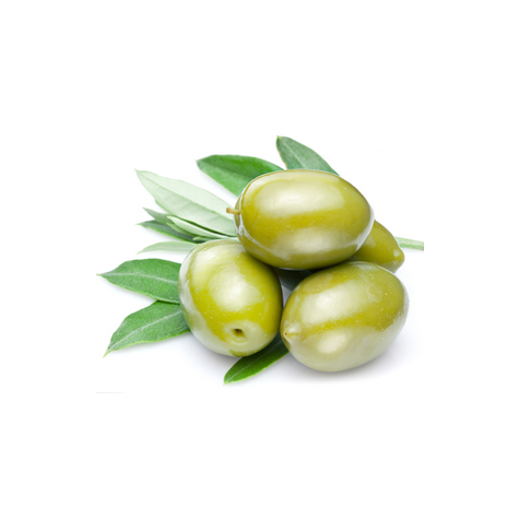 Масло оливы (Olea europaea)