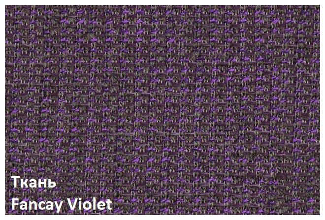 Fancay_Violet.jpg