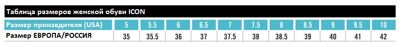Таблица_размеров_женкая_обувь_ICON_ИТОГ_PNG.png