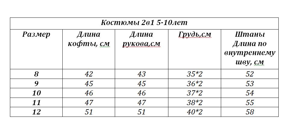 Костюм_2в1_5-10_лет_молния_.png