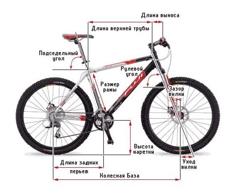 как-выбрать-размер-рамы-горного-велосипеда-фото.jpg