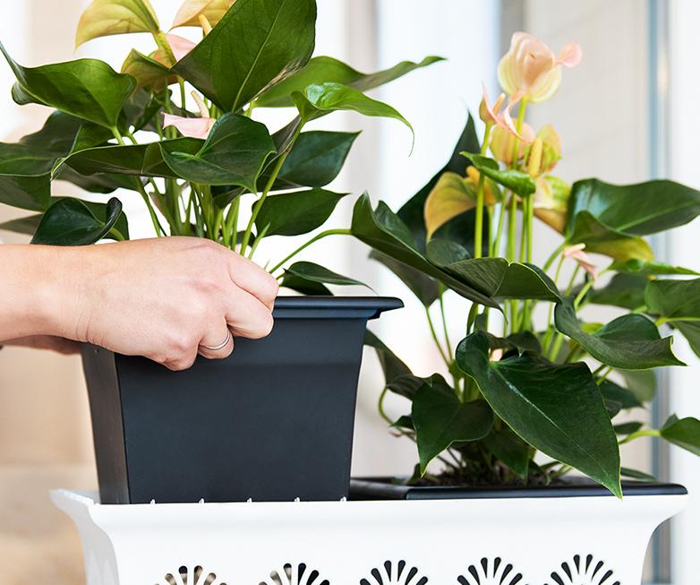 Система кашпо «Лотос» 20см (Ящик для растений с системой прикорневого полива)