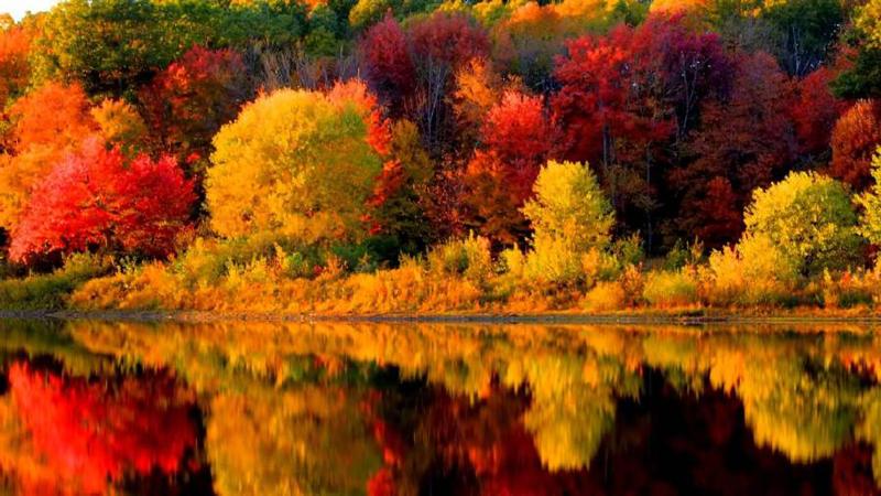 Новая Англия осенью