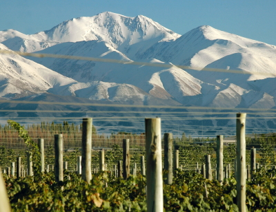 виноградники аргентины Мендоса