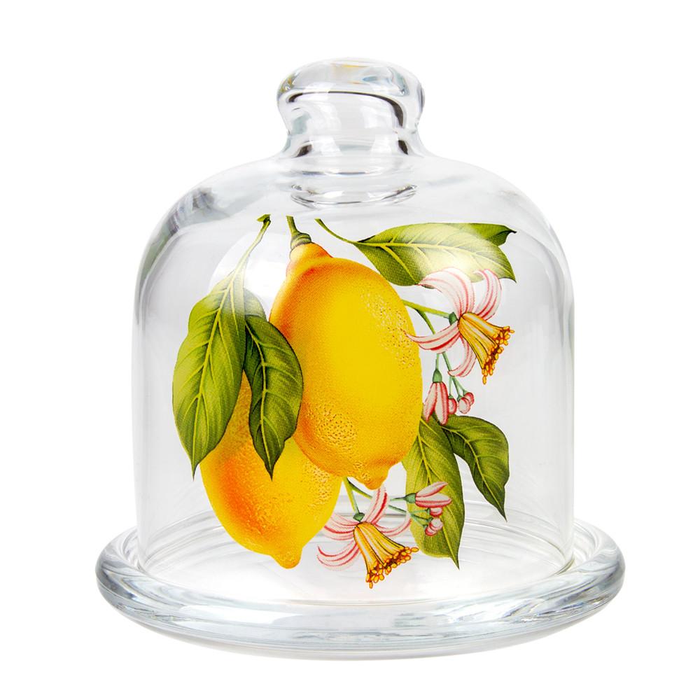Лучшие лимонницы для сервировки