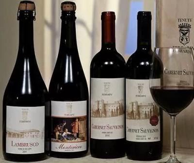 сравнении шампанского и итальянского вина