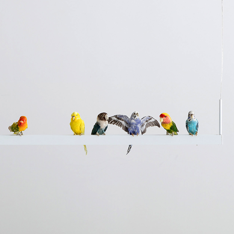 Светильники Bird Chandelier от Sebastian Errazuriz