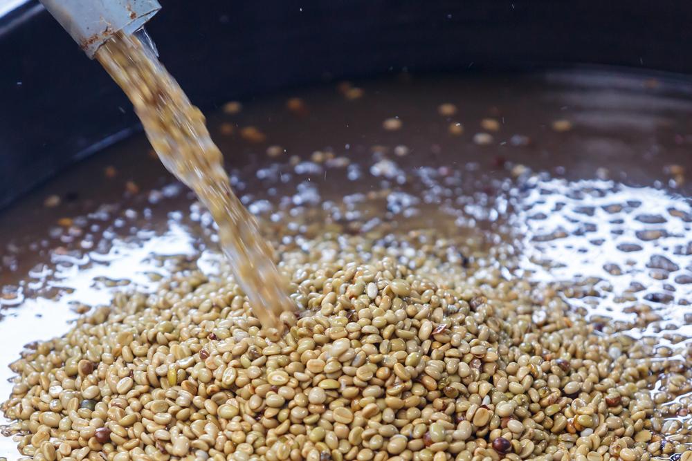 Мытая обработка кофе