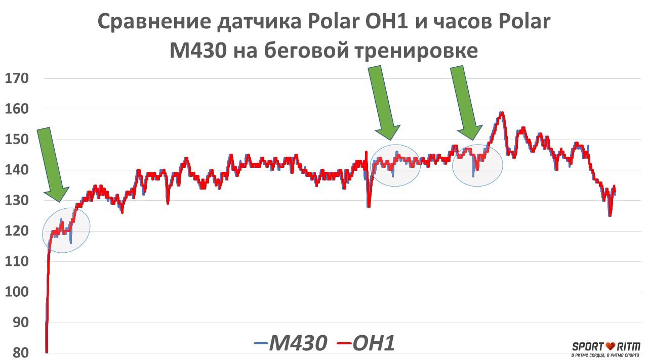 Сравнение графиков пульса Polar M430 и Polar OH1