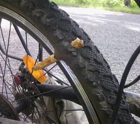 Палка проткнула велосипедное колесо