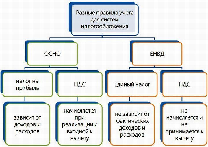 Особенности налогообложения ООО на ОСНО и ЕНВД