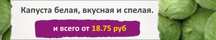 Купить семена Капусты, цена низкая, доставка почтой наложенным платежом по России, курьером по Москве - интернет-магазин АгроБум