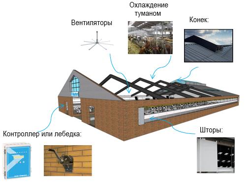 Типичная схема принудительной вентиляции и охлаждения в коровнике: