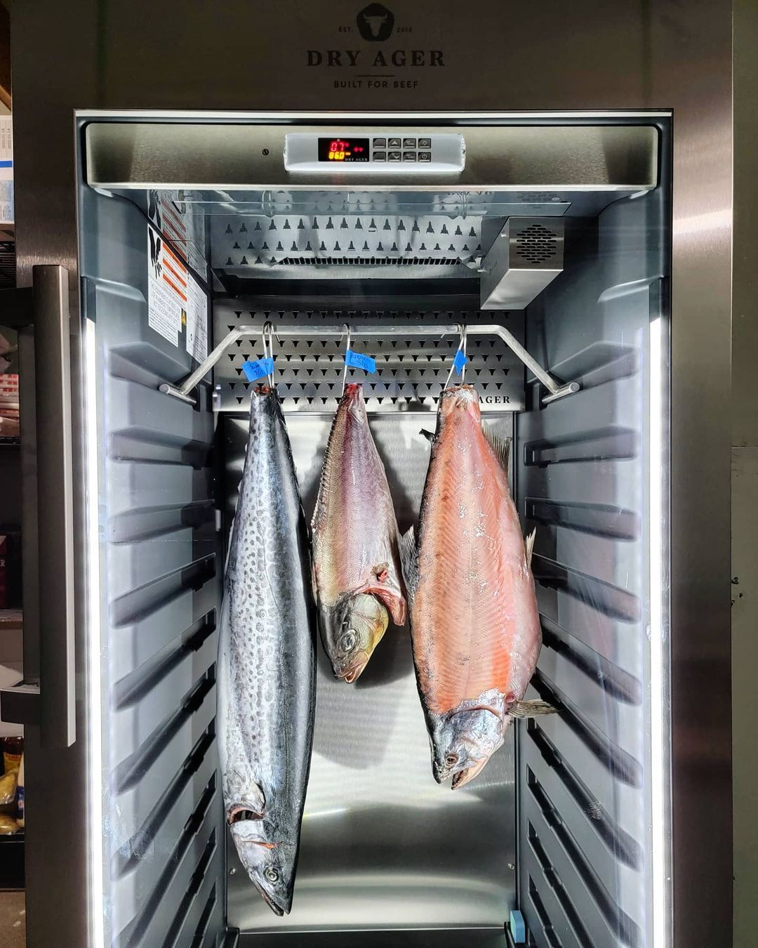 Шкафы Dry Ager – революция в приготовлении рыбы