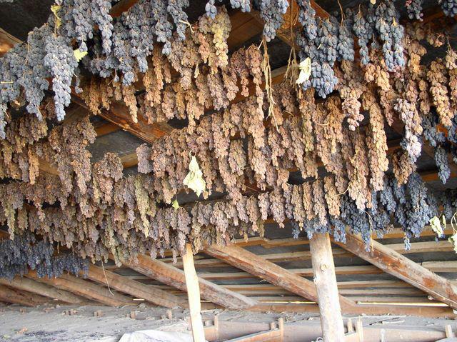 Виноград сушится в тени