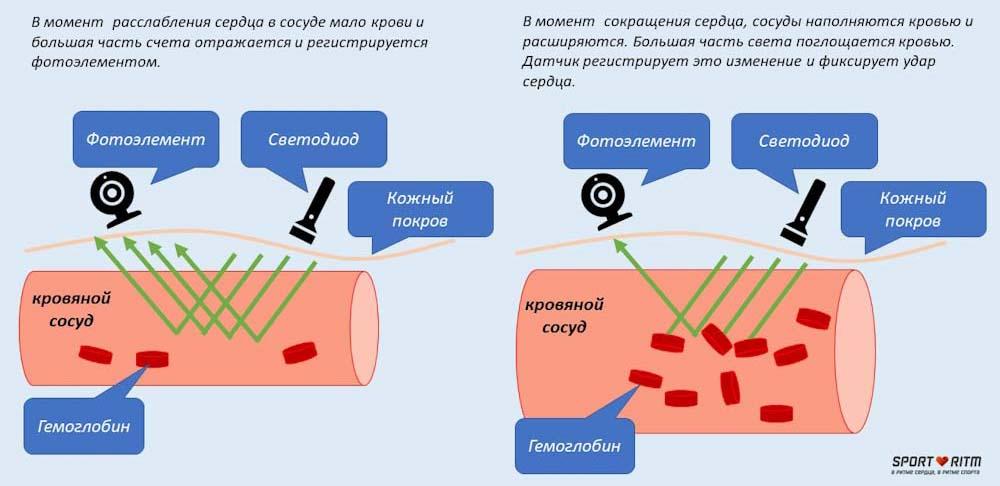 Принцип работы оптического пульсометра