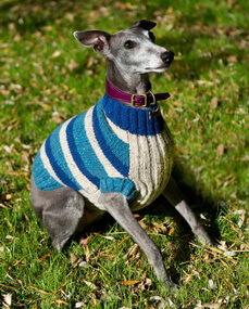Одежда для собак из остатков пряжи