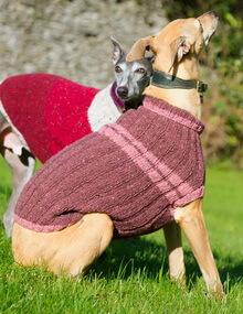 Вязание одежды для собак из остатков пряжи