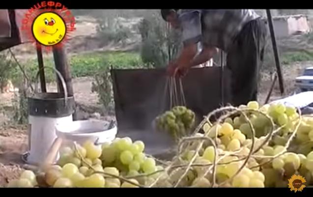 Виноград окунают в каустическую соду