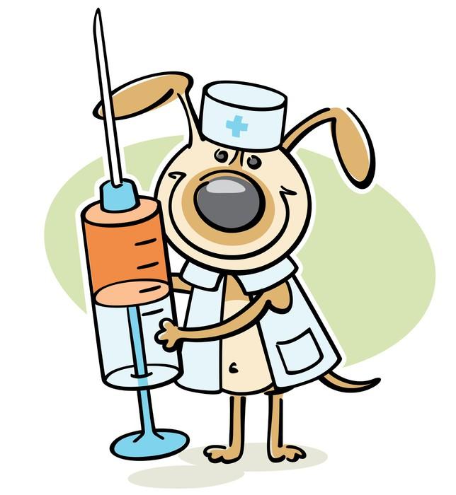 Широкий ассортимент ветеринарных препаратов и зоотоваров
