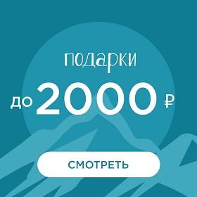 Подарки до 2000 рублей