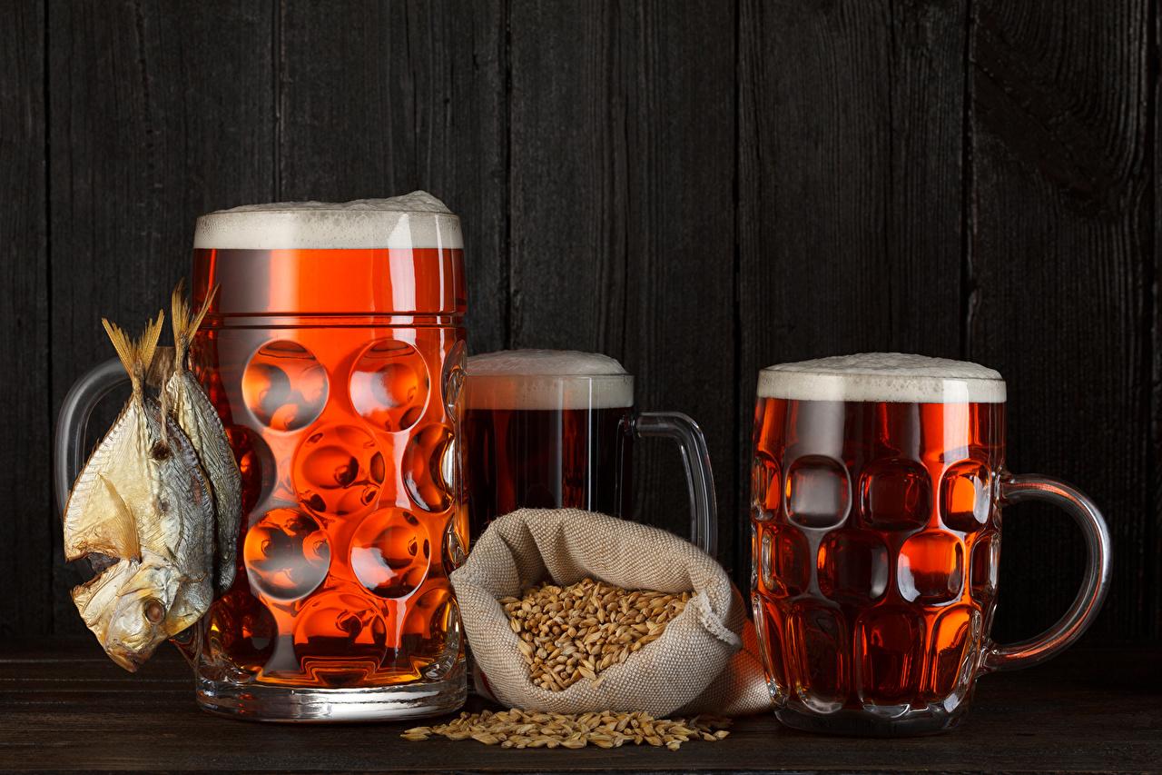 Лучшие кружки и бокалы для пива
